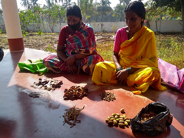 Solega Women share their forest seeds